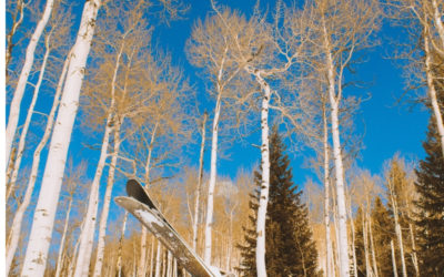 Winter Ski Trips with Charter Flights to Aspen