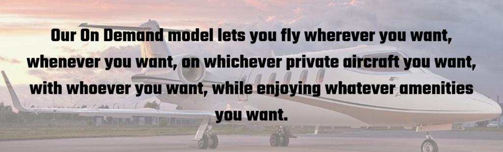 Vault Aviation On Demand model graphic