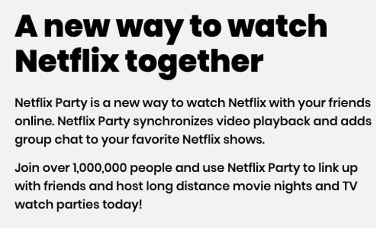 Netflix Party Description Block